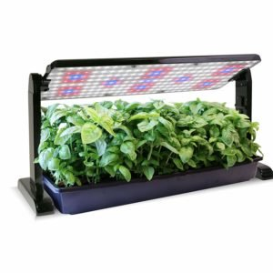 best led grow lights for lettuce