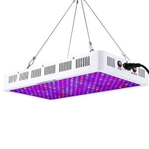 1000 watt grow light