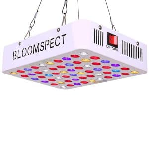 bloomspect cheap grow light