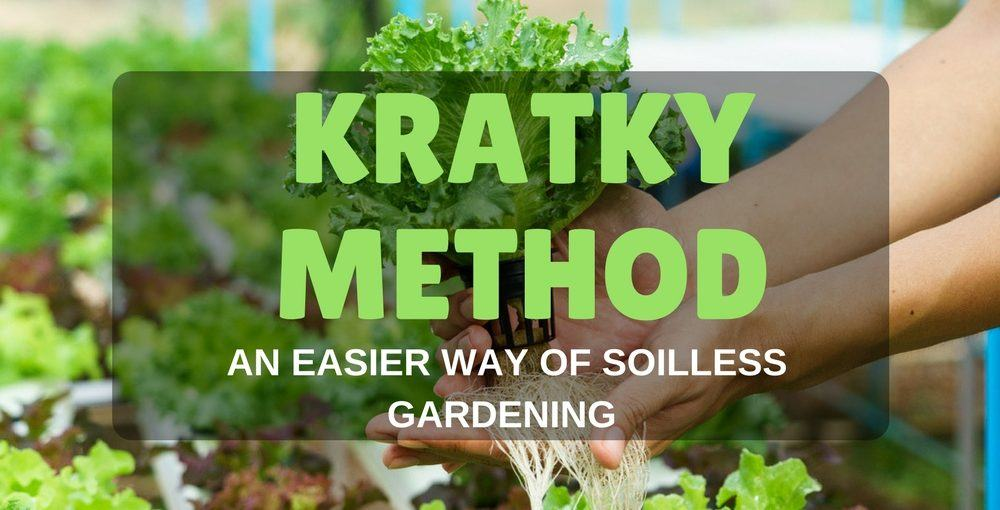 kratky method