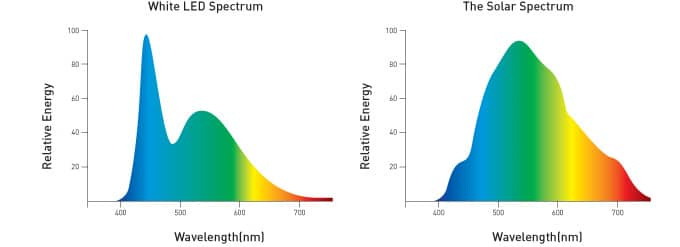spectrum of LED and sunlight