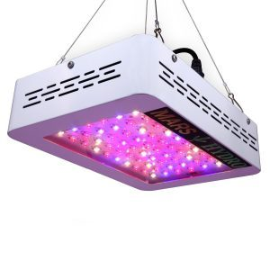 best grow lights in canada