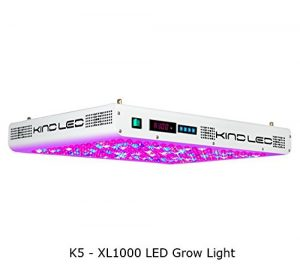 best-grow-lights
