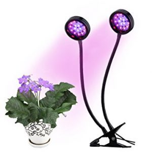 dueal head LED grow light
