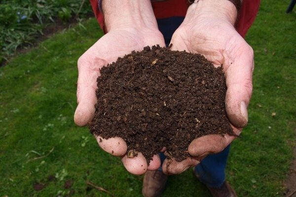 garden soil amendments